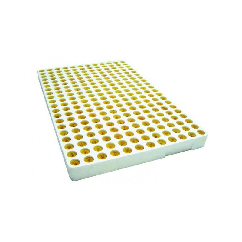 Lesh guri per reprodukcion 240 cop tabela